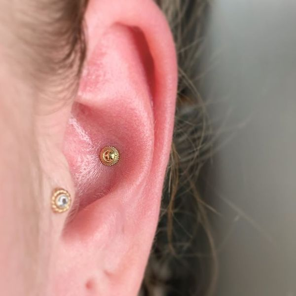 conch piercing gold stud