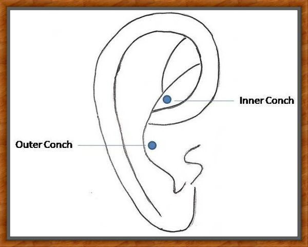 inner conch vs outer conch