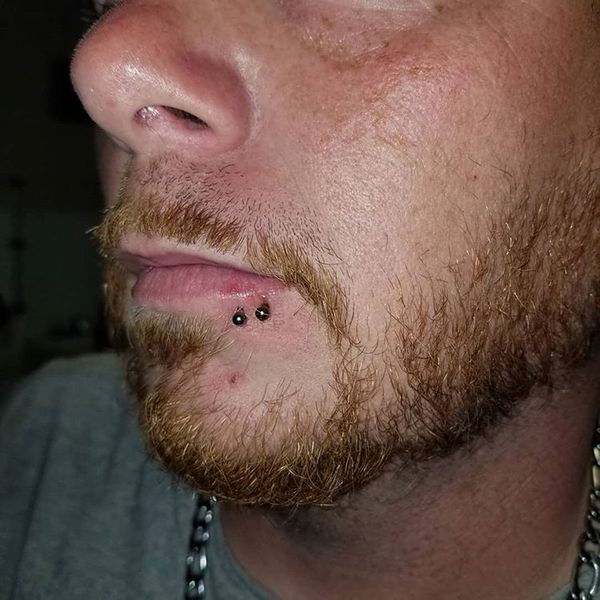 spider bite piercing guys